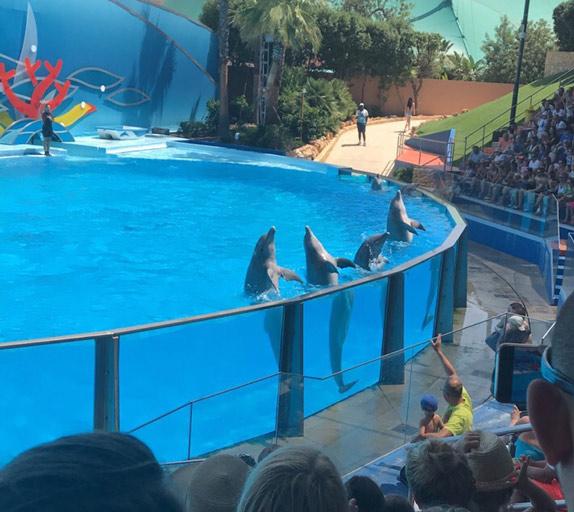 parc aquatique ZooMarine